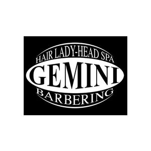 gemini hair monsummano